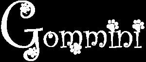 Gommini Vercelli
